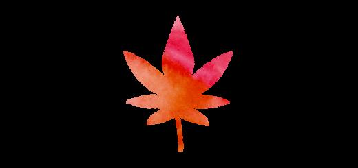 もみじの葉のイラスト