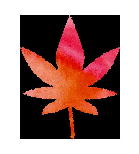 紅葉(もみじ)の葉っぱのイラスト