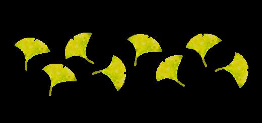 いちょうの葉のパターン