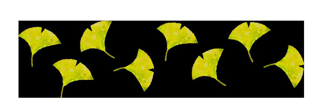 【無料素材】銀杏の葉のパターン