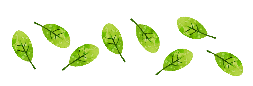 【無料素材】緑の葉の額装