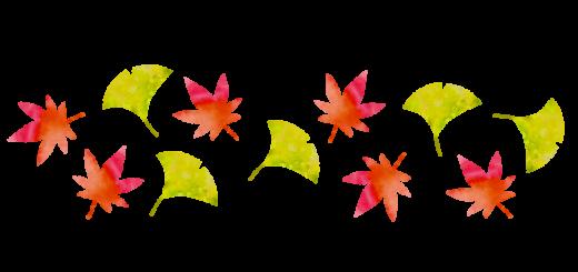 秋の葉っぱのイラスト
