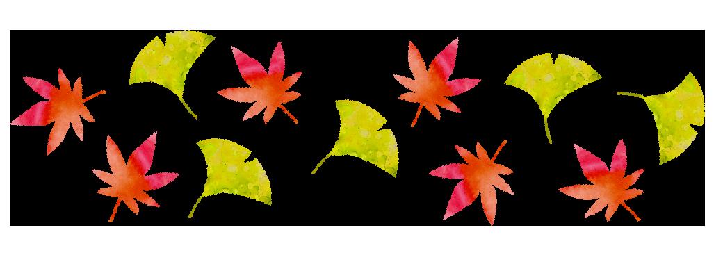 【無料素材】落葉樹の額装、パターンイラスト