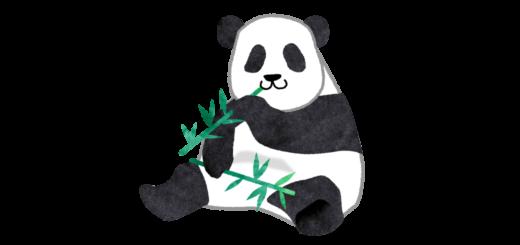 笹を食べているジャイアントパンダのイラスト