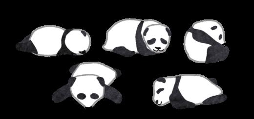 パンダの赤ちゃんがゴロゴロ転がっているイラスト