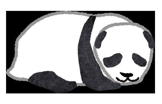 【無料素材】様子をうかがうパンダのイラスト