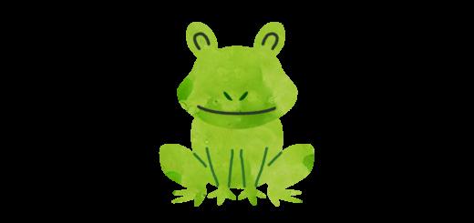 蛙のイラスト