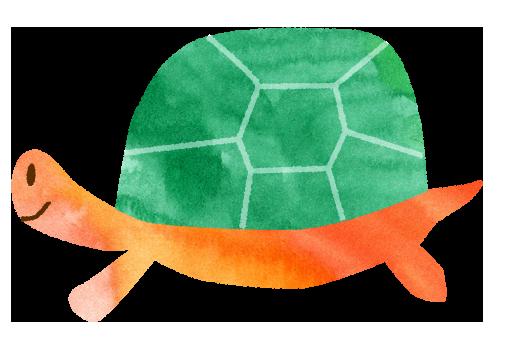 【無料素材】亀のイラスト