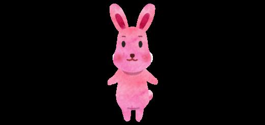 ピンクうさぎのイラスト