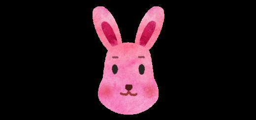 ウサギのお面のイラスト