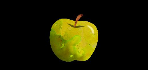 あおりんごのイラスト