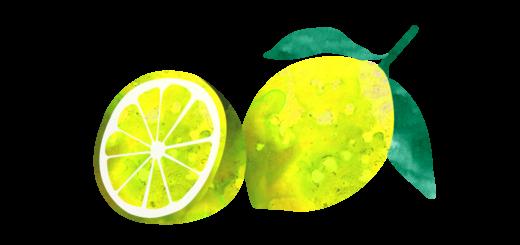 檸檬のイラスト