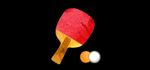 卓球のラケットとピンポン