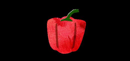 赤いパプリカのイラスト