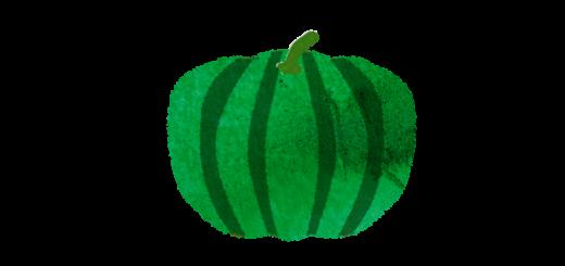 緑カボチャのイラスト