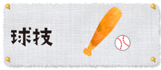 カテゴリ_球技